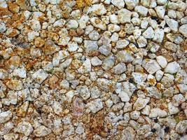 gros plan, de, mur pierre ou roche, pour, arrière-plan, ou, texture photo