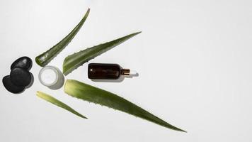 Aloe vera avec des roches chaudes et de l'huile, fond neutre photo