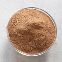 poudre de cacao brun photo