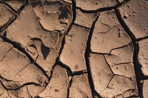 texture de boue sèche très craquelée photo
