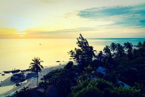 cocotier silhouette avec mer et plage photo
