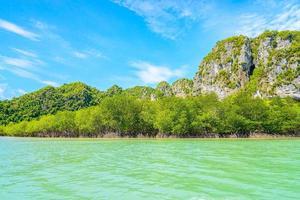 belle forêt de mangroves tropicales en thaïlande photo