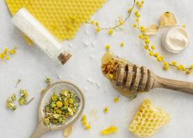 nid d'abeille et goutteur photo