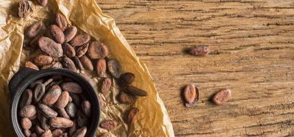 fèves de cacao à plat photo