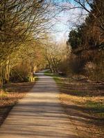 Chemin à travers les arbres dans la lumière du soleil tachetée en automne photo