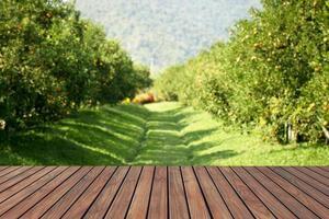 table en bois avec un fond de ferme orange. peut être utilisé pour afficher ou monter vos produits. photo