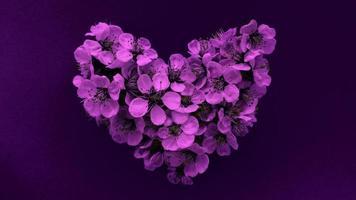 coeur de fleurs de prunier dans des couleurs violettes modernes. peut être utilisé comme bannière, carte postale, impression d'image, conception d'invitation. photo de stock.