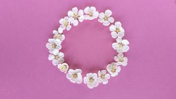 fleurissent en cercle sur fond rose. plat simple poser avec une texture pastel. concept de mode éco. photo de stock.