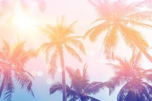cocotiers de palmiers tropicaux sur fond de ciel coucher de soleil flare et bokeh nature. photo
