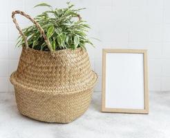 Ficus dans un panier avec une maquette de cadre photo vierge