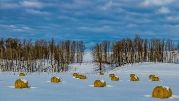 balles de foin dans la neige photo