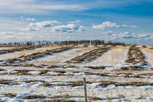 la neige fond sur un champ photo