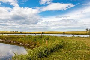 étangs de pêche pendant la journée photo