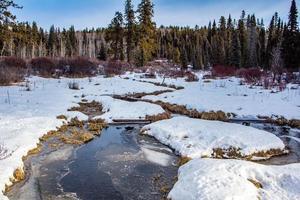 ruisseau dans un champ enneigé photo