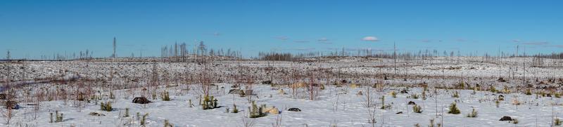vue panoramique sur un champ enneigé photo