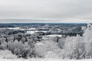 paysage de campagne gelé photo