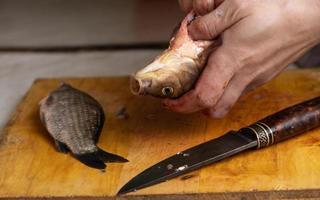 processus de nettoyage et de coupe du poisson frais vivant. photo