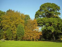 Arbres avec feuillage d'automne dans le Yorkshire Arboretum, North Yorkshire, Angleterre photo