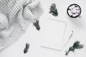 couverture et chocolat chaud près de brindilles de conifères et cahier photo