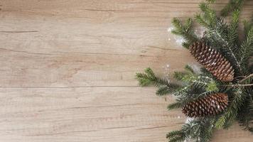 brindilles de conifères, chicots et neige ornementale photo