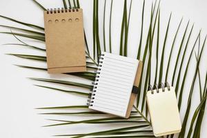 cahiers en papier vierge sur feuille de ficus photo