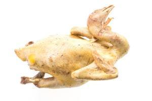 viande de poulet isolée photo