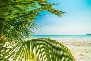 belle plage tropicale et mer photo