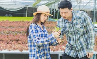 jeunes agriculteurs travaillant sur une ferme maraîchère biologique photo