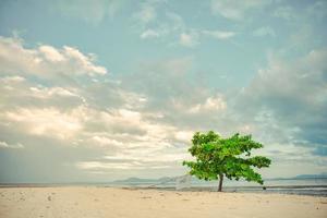 Lever du soleil de la plage de lakawon à cadix, negros occidental photo