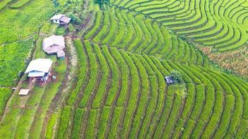 Vue aérienne des rizières en terrasses vertes photo