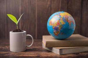 journée mondiale de l'environnement photo