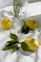 citrons sur tissu blanc photo