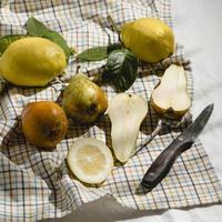 poires et agrumes sur une couverture de pique-nique photo