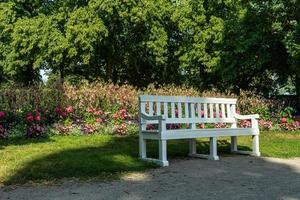 banc de parc blanc devant des fleurs photo