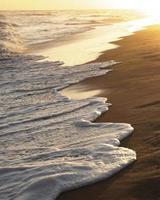 vagues sur la plage photo