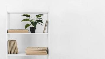 bibliothèque de style nordique avec plante photo