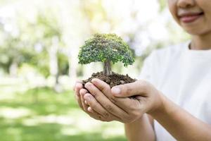 femme tenant petit arbre photo