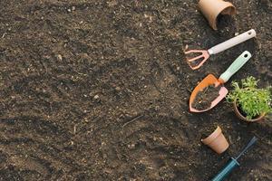 outils de jardin et pots avec des plantes sur le sol photo