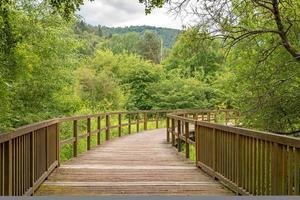 pont en bois sur une prairie photo