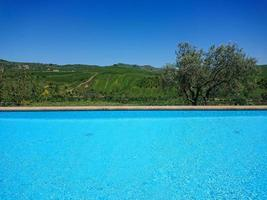 piscine du complexe photo