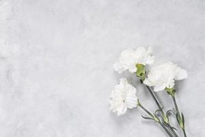 table de fleurs d'oeillet blanc. beau concept de photo de haute qualité et résolution