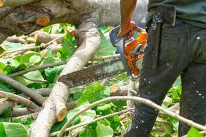 Gros plan de la tronçonneuse couper le journal par la scie à chaîne avec de la sciure de bois volant autour. photo