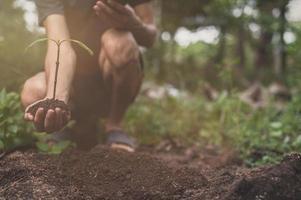 journée mondiale de l'environnement, planter des arbres et aimer l'environnement, aimer la nature. photo