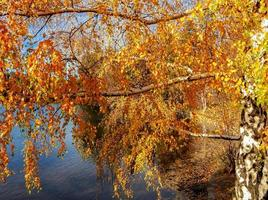 deschutes river colours au pioneer park bend, ou photo