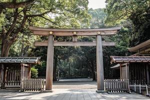 Porte torii en bois, la porte traditionnelle japonaise au sanctuaire shinto, meiji-jingu à tokyo, japon. photo