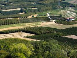 Vignobles langhe du piémont en automne photo