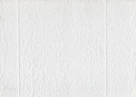 Texture de papier toilette en tissu blanc photo