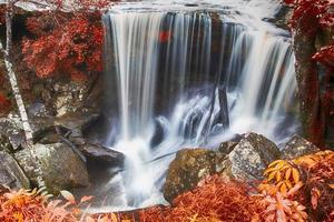 cascade d'automne dans la forêt profonde photo