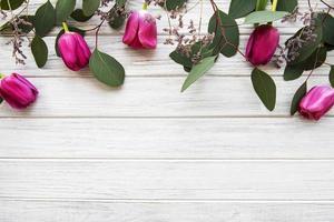 belle bordure de tulipes photo