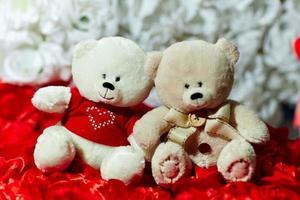 ours en peluche avec coeur photo